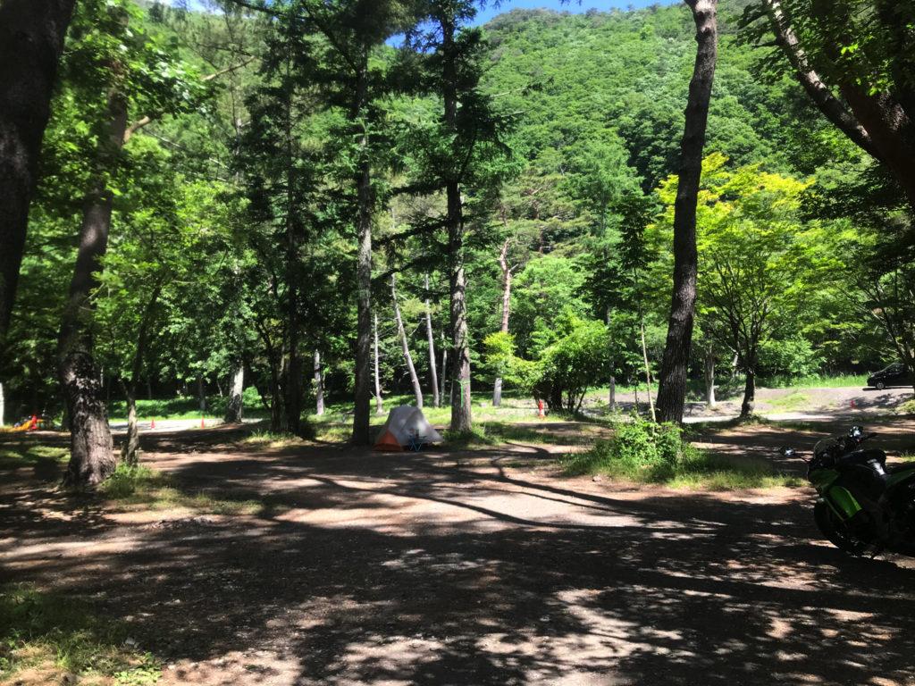 林間サイトはソロキャンプ向け